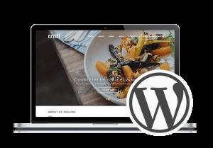 Web Design Oswego